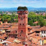 Lucca-Torre Guinigi